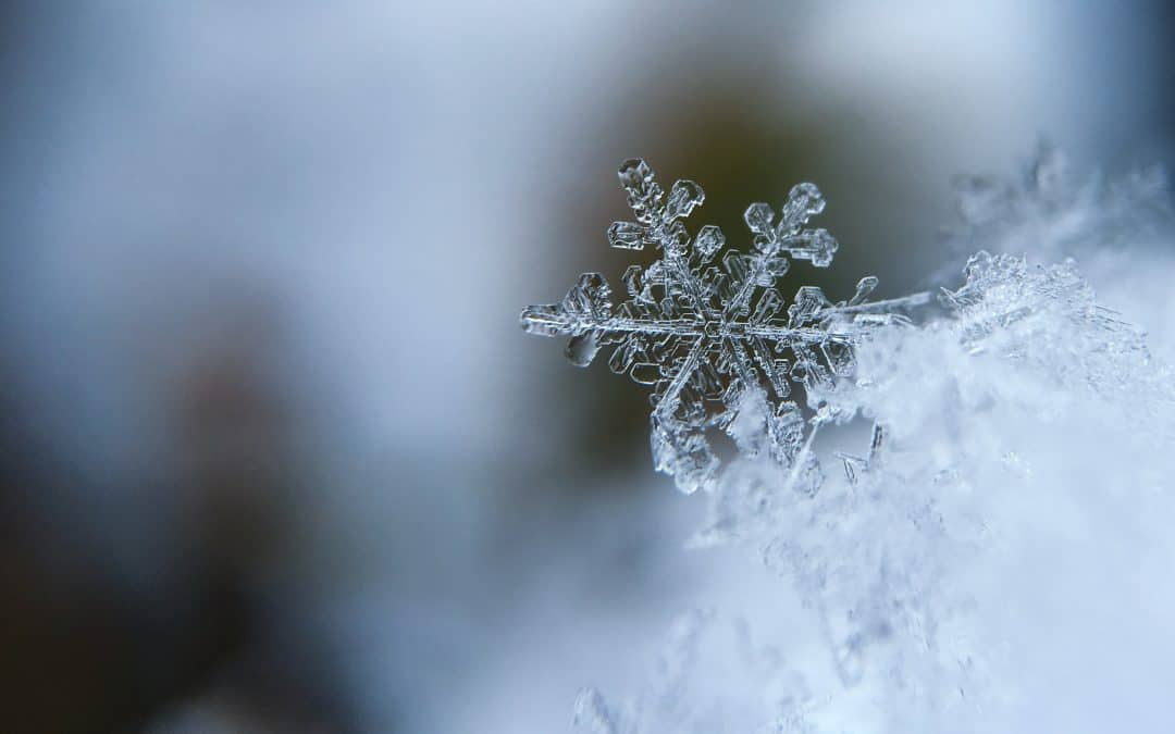 Ten Tips to Beat the Winter Blues